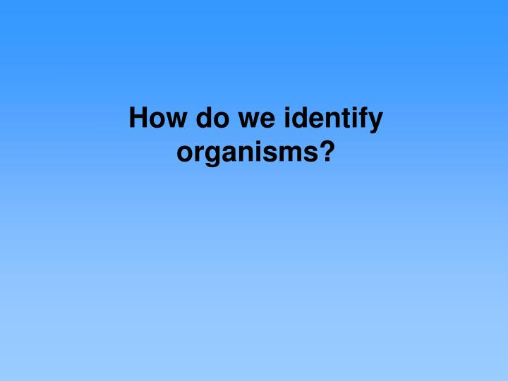 How do we identify organisms?