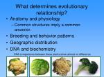 what determines evolutionary relationship