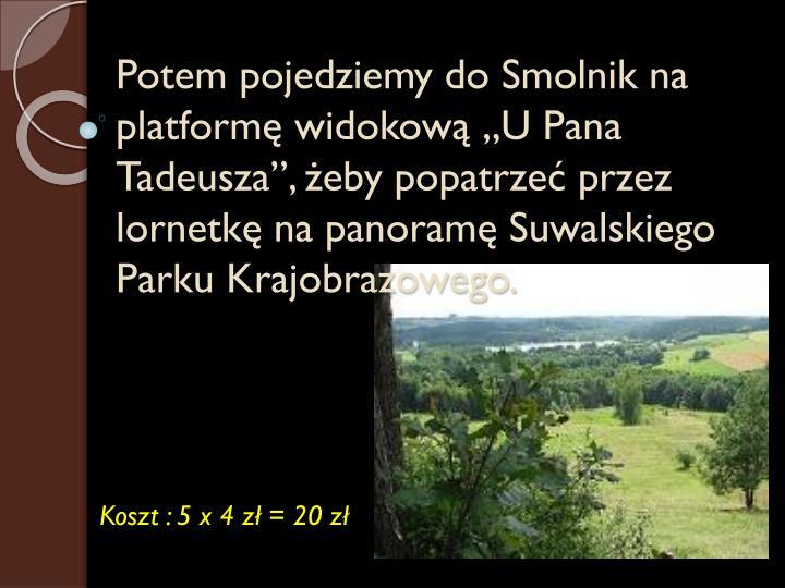 """Potem pojedziemy do Smolnik na platformę widokową """"U Pana Tadeusza"""", żeby popatrzeć przez lornetkę na panoramę"""