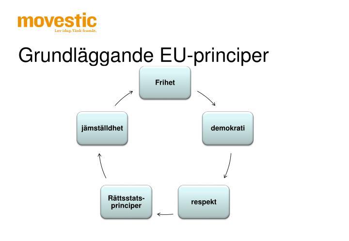 Grundläggande EU-principer