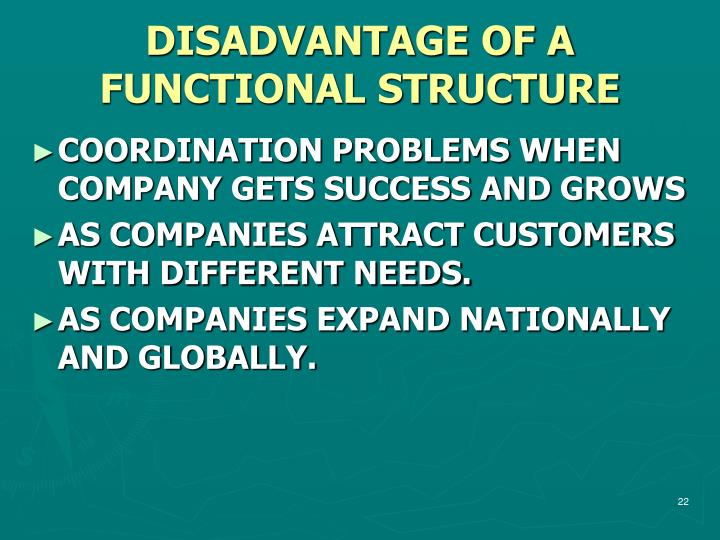 DISADVANTAGE OF A FUNCTIONAL STRUCTURE