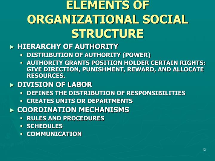 ELEMENTS OF ORGANIZATIONAL SOCIAL STRUCTURE