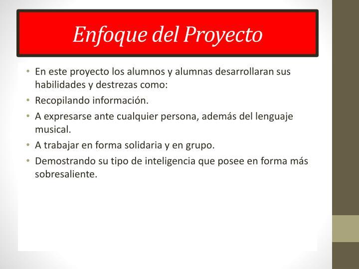Enfoque del Proyecto