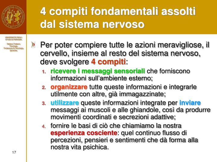 4 compiti fondamentali assolti dal sistema nervoso