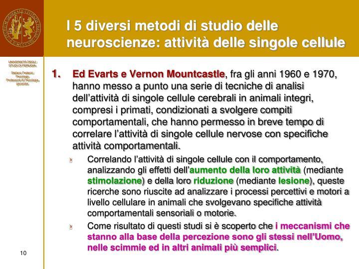I 5 diversi metodi di studio delle neuroscienze: attività delle singole cellule