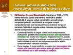i 5 diversi metodi di studio delle neuroscienze attivit delle singole cellule