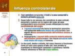 influenza controlaterale