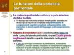 le funzioni della corteccia prefrontale