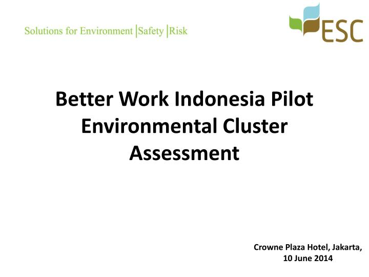 Better work indonesia pilot environmental cluster assessment