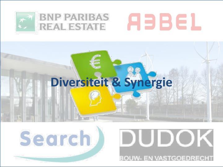 Diversiteit & Synergie