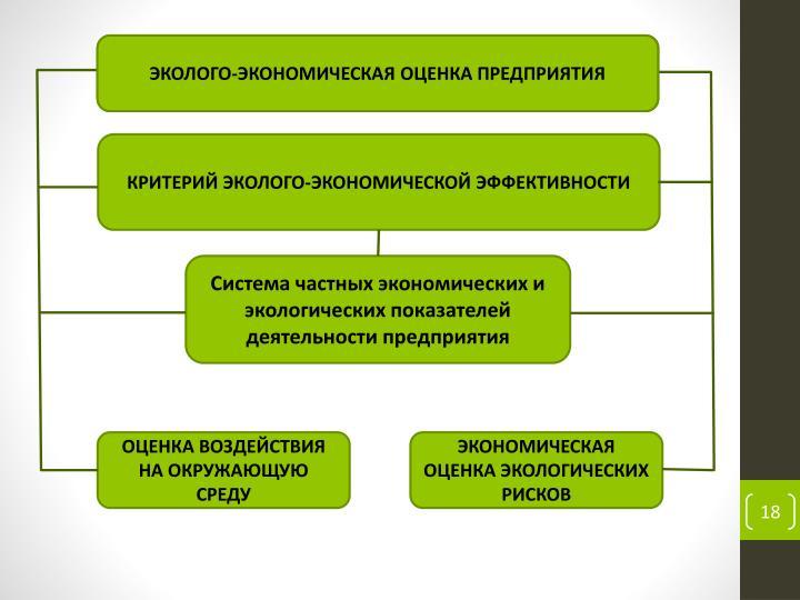 ЭКОЛОГО-ЭКОНОМИЧЕСКАЯ ОЦЕНКА ПРЕДПРИЯТИЯ