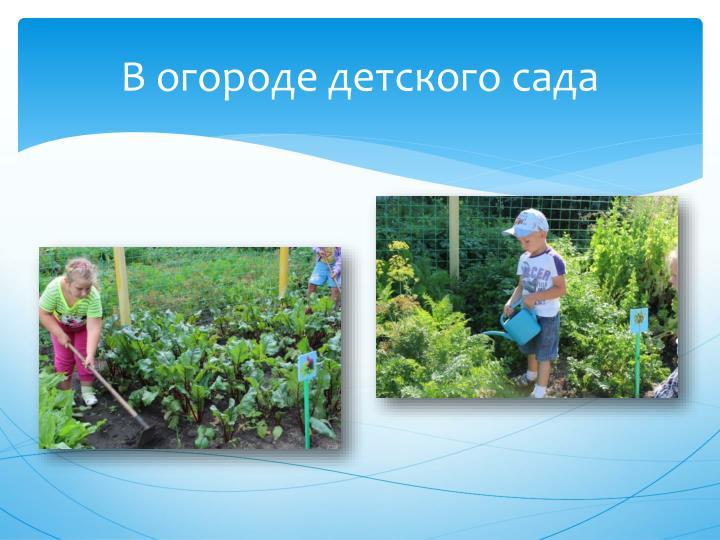 В огороде детского сада