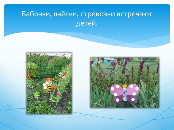 Бабочки, пчёлки,
