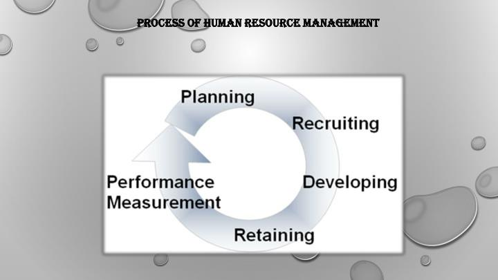 PROCESS OF HUMAN RESOURCE MANAGEMENT