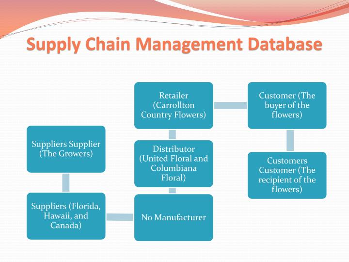 Supply Chain Management Database