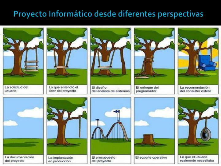 Proyecto Informático desde diferentes perspectivas