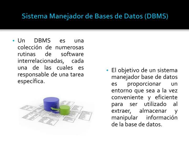 Sistema Manejador de Bases de Datos (DBMS)