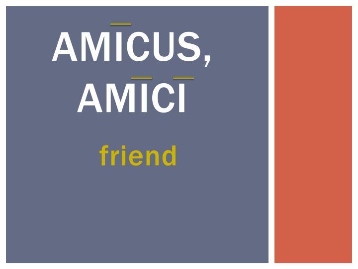 Amicus,