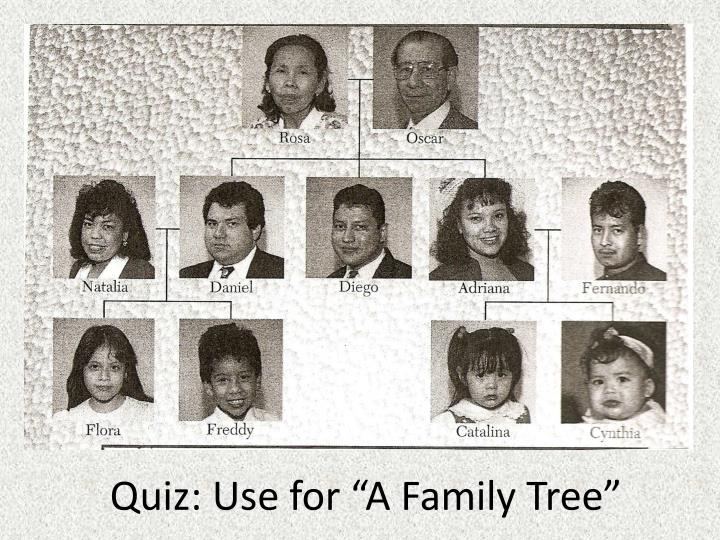 "Quiz: Use for ""A Family Tree"""