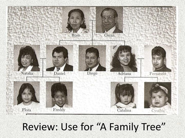 "Review: Use for ""A Family Tree"""