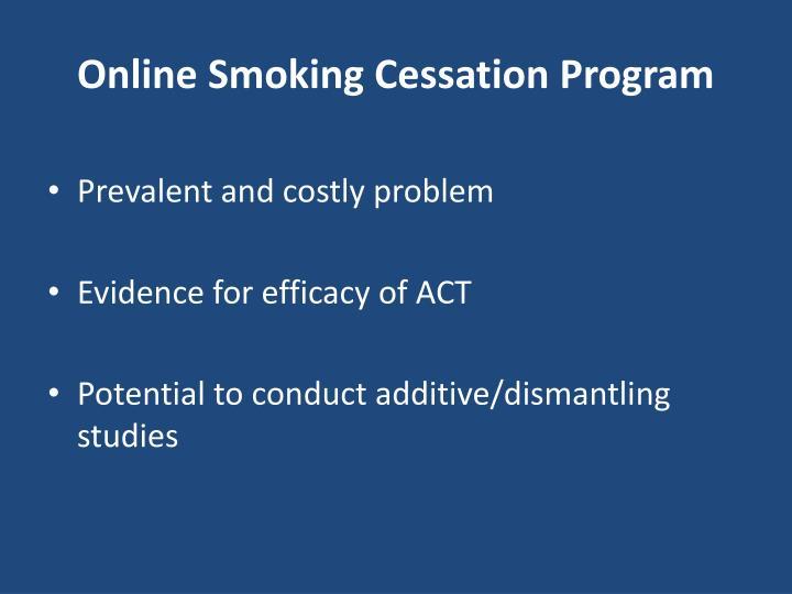 Online Smoking Cessation Program