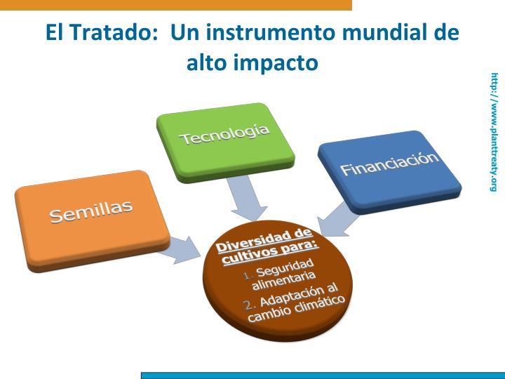 El Tratado:  Un instrumento mundial de alto impacto