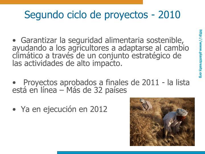 Segundo ciclo de proyectos - 2010