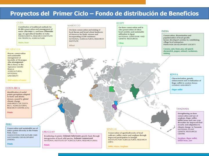 Proyectos del  Primer Ciclo – Fondo de distribución de Beneficios