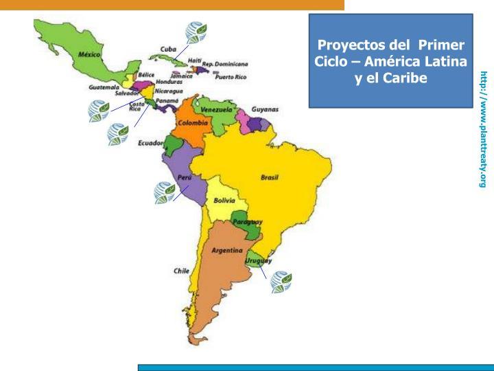 Proyectos del  Primer Ciclo – América Latina y el Caribe
