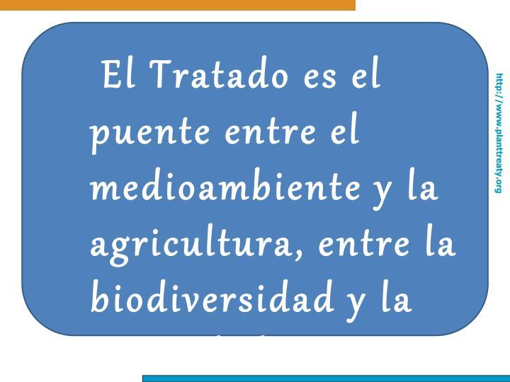 El Tratado es el puente entre el medioambiente y la agricultura, entre la biodiversidad y la seguridad alimentaria