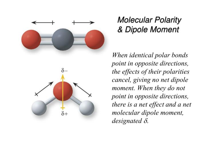 Molecular Polarity & Dipole Moment
