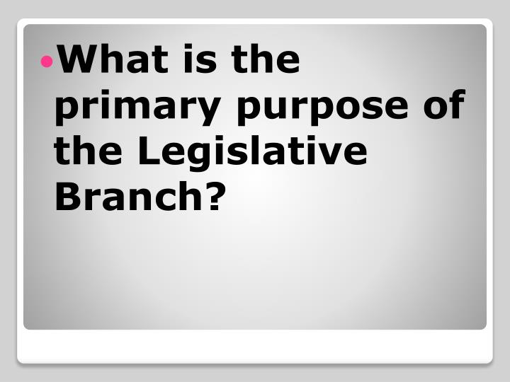 What is the primary purpose of the Legislative Branch?