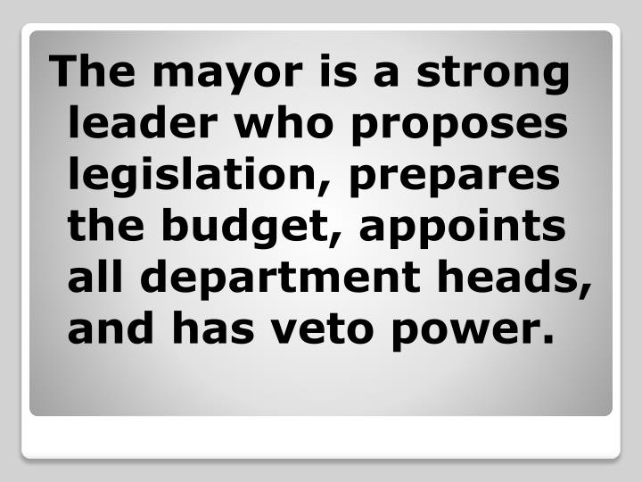 The mayor is a strong leader who proposes legislation, prepares the budget, appoints all department heads, and has veto power.