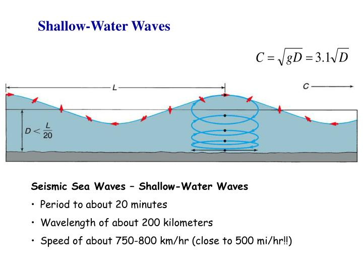 Shallow-Water Waves