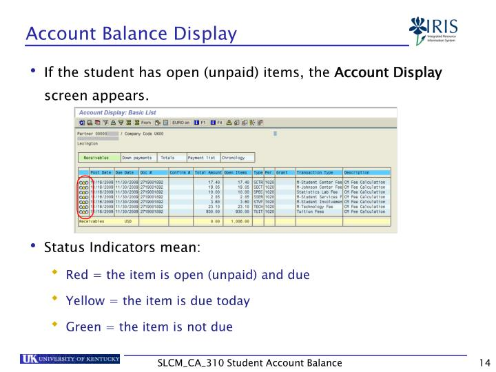 Account Balance Display