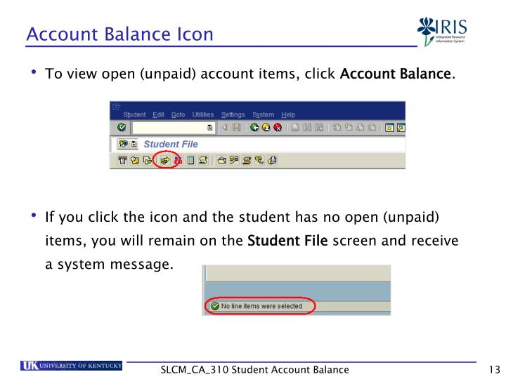 Account Balance Icon