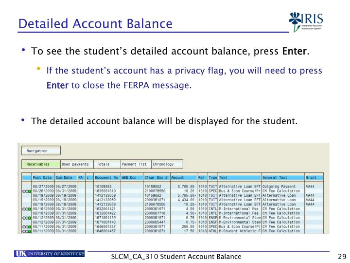 Detailed Account Balance