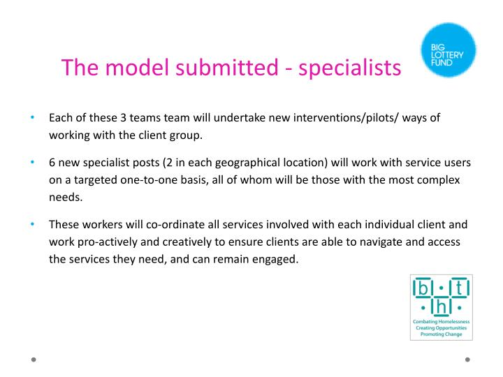 The model submitted - specialists