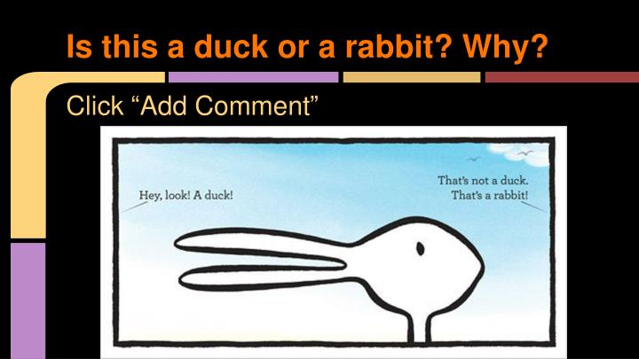 Is this a duck or a rabbit? Why?