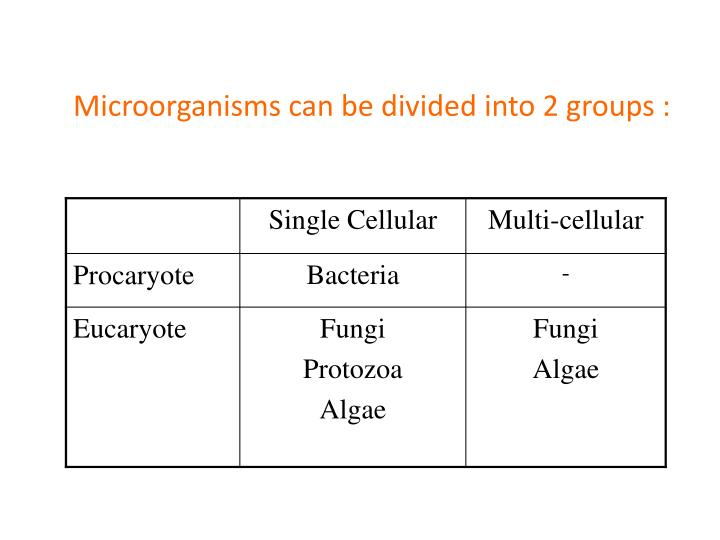 Microorganisms can be divided into 2 groups