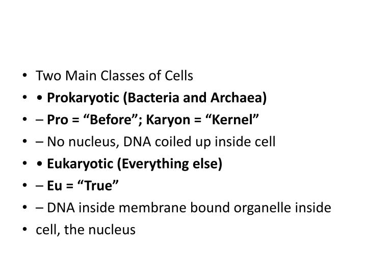 Two Main Classes of Cells