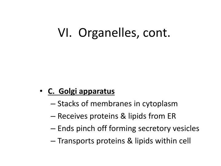VI.  Organelles, cont.