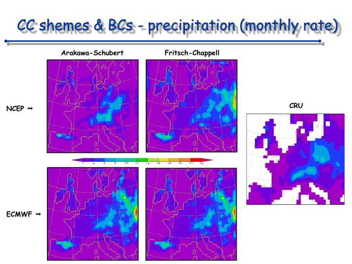 CC shemes & BCs - precipitation (monthly rate)