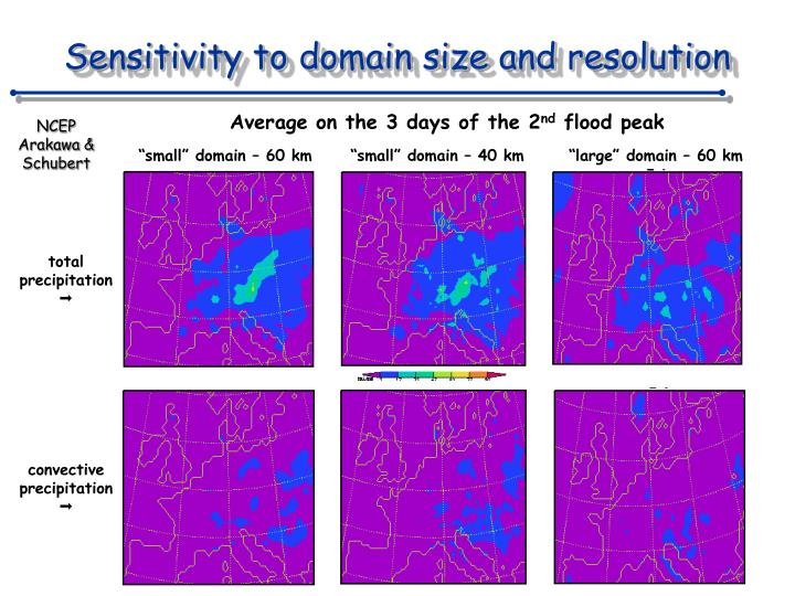 Sensitivity to domain size and resolution