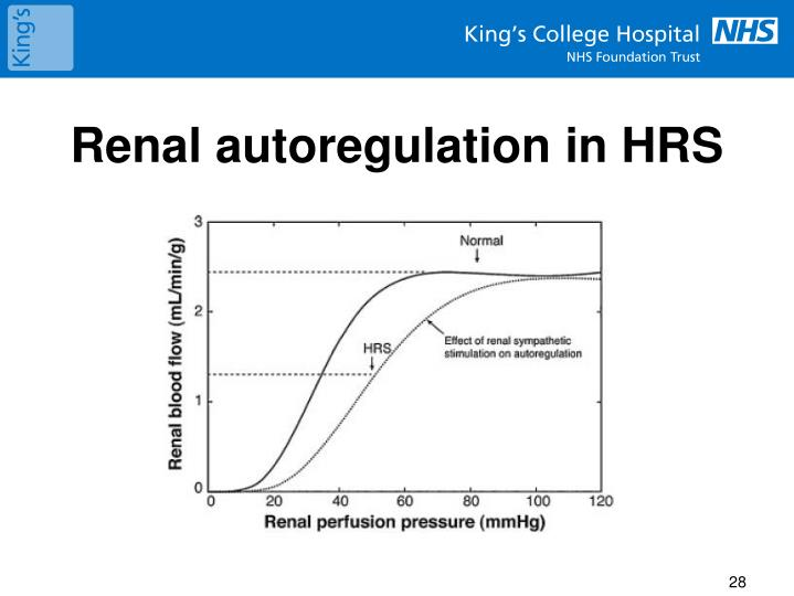 Renal autoregulation in HRS