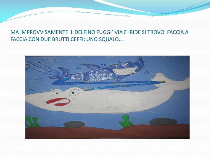 MA IMPROVVISAMENTE IL DELFINO FUGGI' VIA E IRIDE SI TROVO' FACCIA A FACCIA CON DUE BRUTTI CEFFI: UNO SQUALO…
