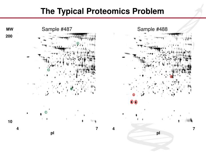 The Typical Proteomics Problem
