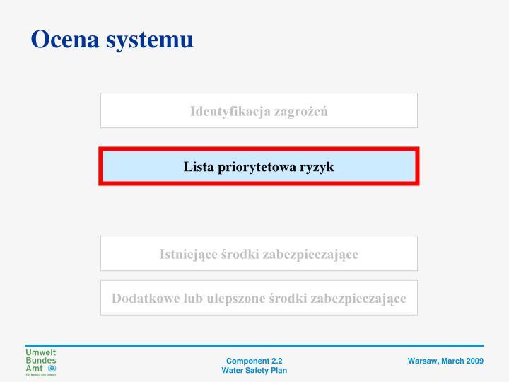 Ocena systemu
