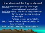 boundaries of the inguinal canal