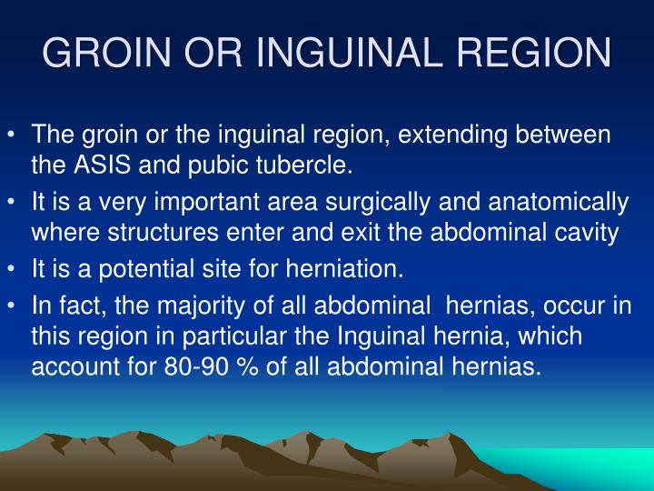 GROIN OR INGUINAL REGION